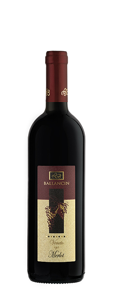 Still Red Wine Merlot Veneto IGT